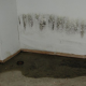 basement sewer cleanup toronto
